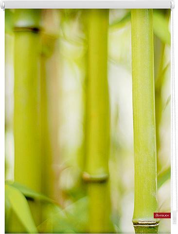 Ritininė užuolaida »Bambus« Klemmfix K...