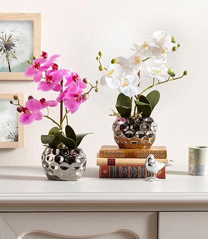 Dirbtinė gėlė »Orchidee« 30 cm