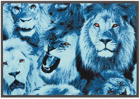 BRUNO BANANI Durų kilimėlis »Lions« rechteckig aukš...