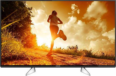 LED-TV »TX-49EXW604«