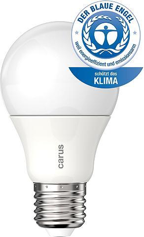LED lemputės E27-Blauer Engel- 2vnt. r...
