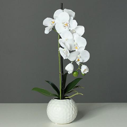 Dirbtinis augalas »Orchidee« 46 cm