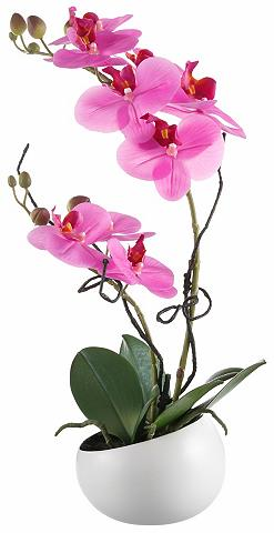 Dirbtinė gėlė »Orchidee« naturgetreu s...