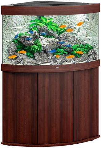 JUWEL AQUARIEN Akvariumas »Trigon 190 LED + SBX Trigo...