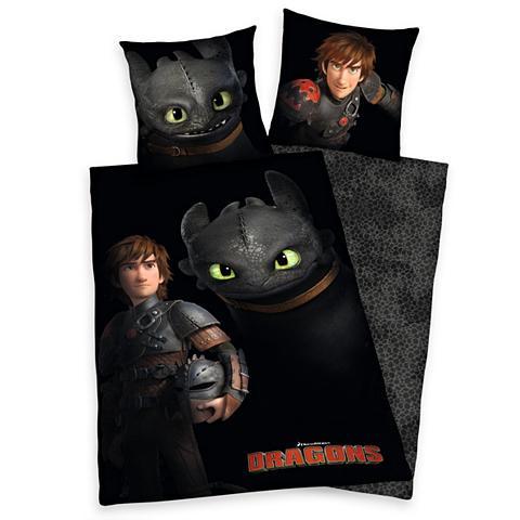 Vaikiška patalynė Dragons »Dragons Ohn...