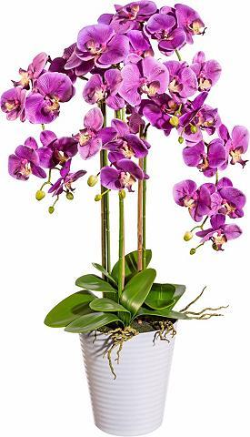 Deko Dirbtinė orchidėja ca. 94 cm hoch...