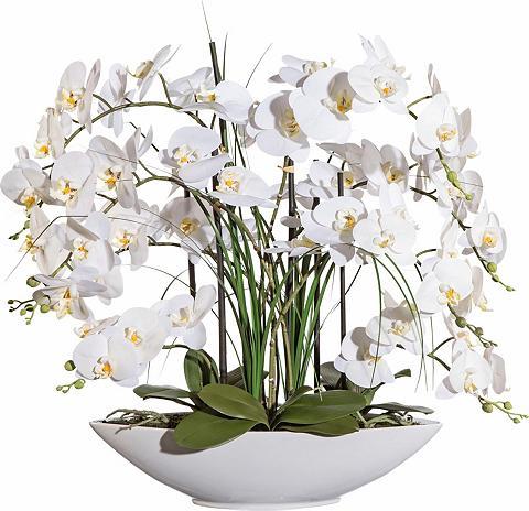 Deko Dirbtinė orchidėja ca. 70 cm hoch...