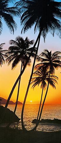 Durų tapetas »Sunny Palms« 2 vnt. rink...