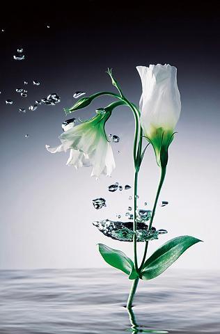 XXL Plakatas »Giant Art - Crystal Flow...