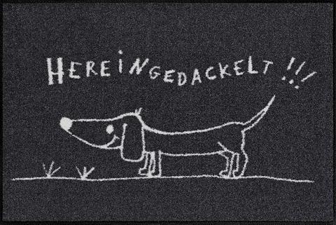 Durų kilimėlis »Hereingedackelt« recht...