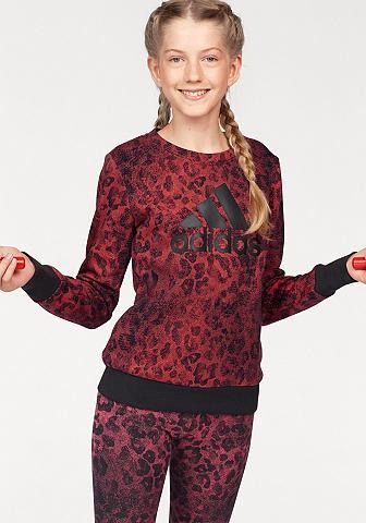 ADIDAS PERFORMANCE Sportinio stiliaus megztinis »YG CREW ...