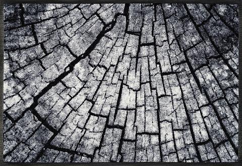 Durų kilimėlis »Timber« wash+dry by Kl...