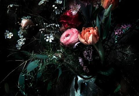 KOMAR Fototapetas »Still Life« 368/254 cm