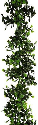 Dirbtinis augalas »Buchsbaum-Girlande«...