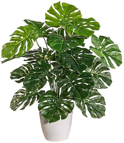 Dirbtinis augalas »Split-Philodendron«...