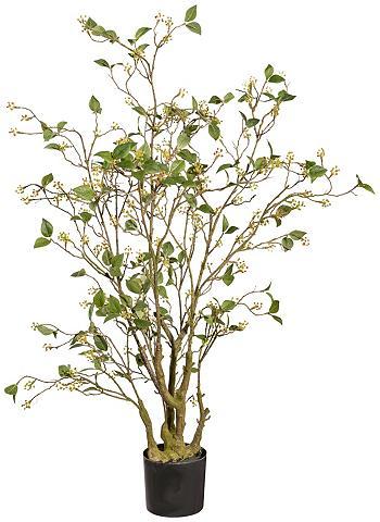 Dirbtinis augalas »Viburnum« im Kunsts...