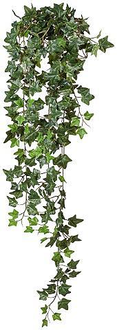 Dirbtinis augalas »Efeu-Hänger« aukšti...