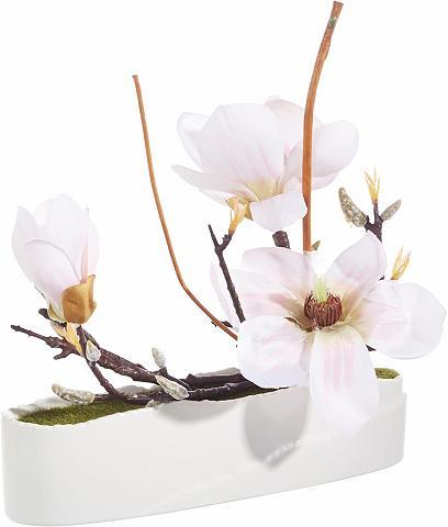 Dirbtinė gėlė »Magnolie in Schale«
