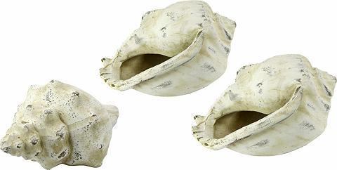 HOME AFFAIRE Dekoracija Keramikinės kriauklės (Rink...