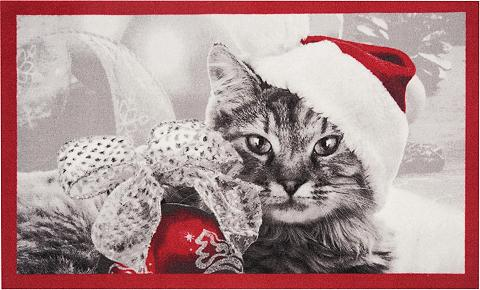 HANSE HOME Durų kilimėlis »Christmas Cat« rechtec...
