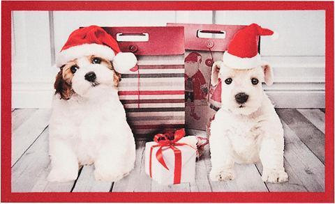 HANSE HOME Durų kilimėlis »Christmas Dogs« rechte...
