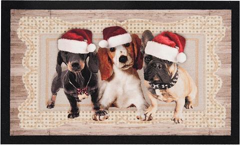 HANSE HOME Durų kilimėlis »Christmas Dogs II« rec...