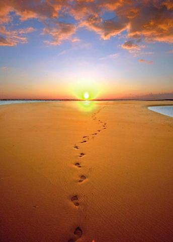RASCH Fototapetas »Sonnenaufgang« mehrfarbig...