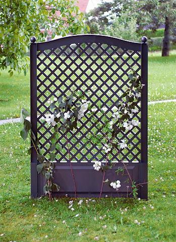 Ažūrinė sienelė gėlėms »100 cm anthraz...