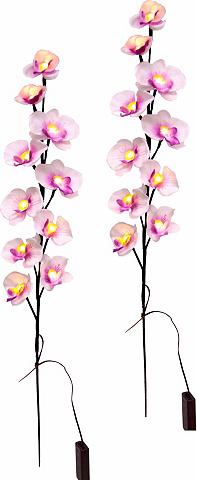 LED dekoracija »Orchidee su LED« (2 vn...