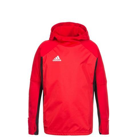 ADIDAS PERFORMANCE Marškinėliai su gobtuvu »Tiro 17 Warm«...