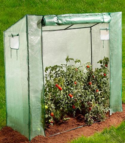 KONIFERA Pomidorų auginimo šiltnaminis Bx Tx H:...