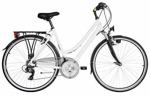 Turistinis dviratis »Canterbury« Shima...