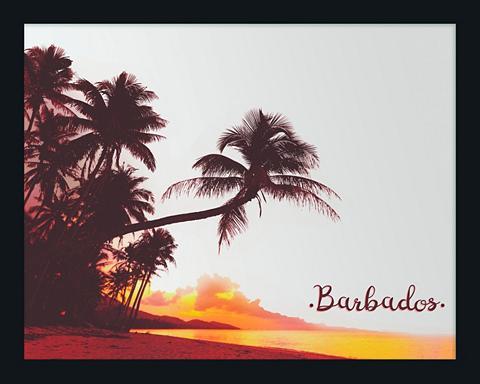 Paveikslas-veidrodis gerahmt »Barbados...