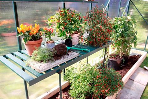 VITAVIA Stalas augalams grün Bx T: 120x56 cm