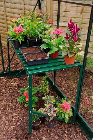 VITAVIA Stalas augalams grün Bx Tx H: 121x54x7...