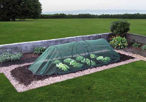 Augalų apsauga grün BxLxH: 150x300x80 ...