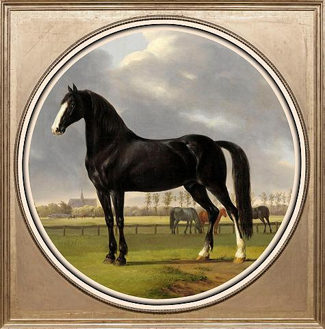 Paveikslas »Pferde«