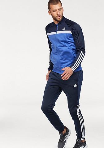 ADIDAS PERFORMANCE Sportinis kostiumas »MEN TRP CB TRACKS...