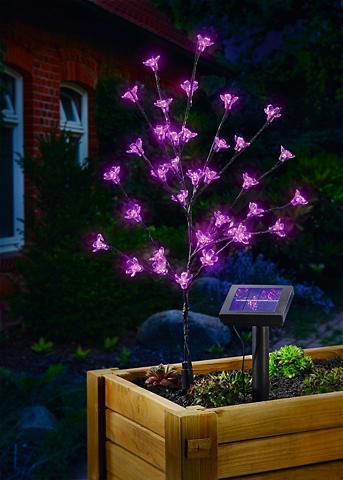 ESOTEC Šviestuvas su saulės baterija »Blütens...