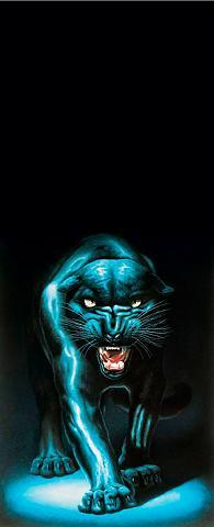 PAPERMOON Fototapetas »Panther - Türtapete« Blue...