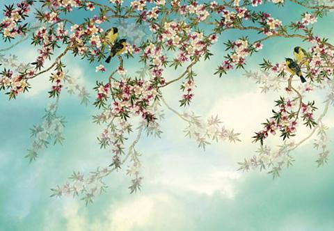 KOMAR Fototapetas »Sakura« iš Papier (8er-Se...
