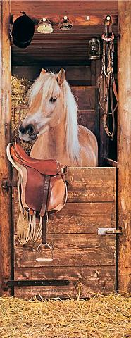 PAPERMOON Fototapetas »Horse in Stable - Türtape...