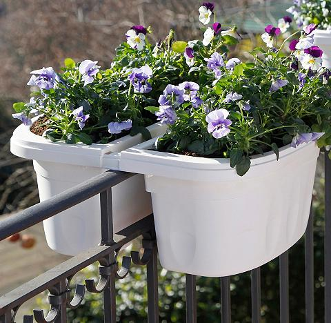 BAMA Lovelis gėlėms »Klunia« 40 cm plotis w...