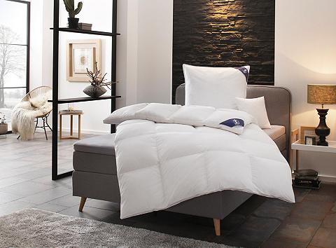 SPESSARTTRAUM Rinkinys: pūkinė antklodė + pagalvė »E...
