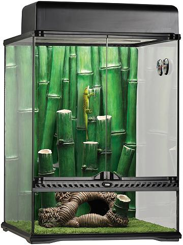EXO TERRA Rinkinys: terariumas »Bamboo Forest Ki...