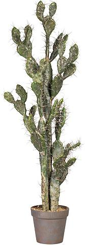Kunstkaktus »Kaktus Opuntie«