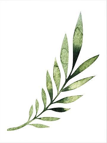 Plakatas »Kvilis - Palm Leaf« 50/60 cm...