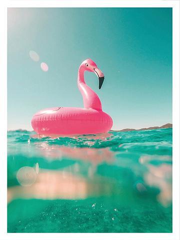 Plakatas »Time for swimming« 50/60 cm