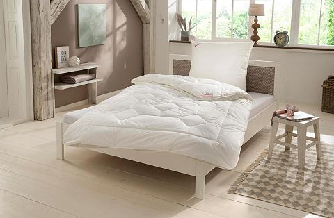 PARADIES Antklodė + Mikropluošto pagalvė »Set H...