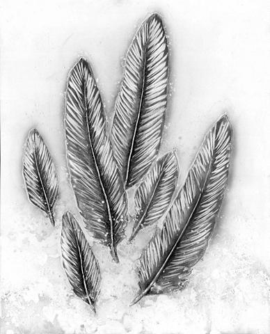 KAYOOM Aliumininis paveikslas Feder 80cm x 10...